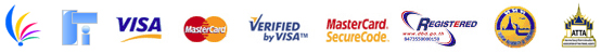 payment by visa and master cards